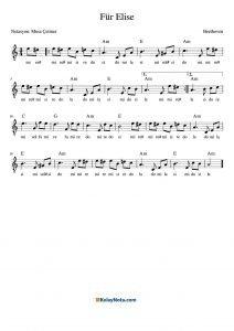 Für Elise Kolay Nota